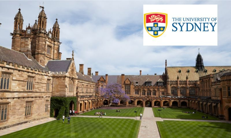 Acceptance Rates and Rankings at the University of Sydney