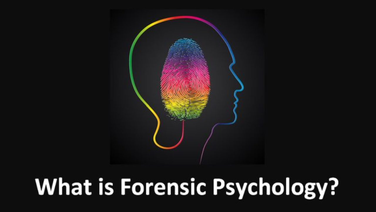 What Is Forensic Psychology Freeeducator Com