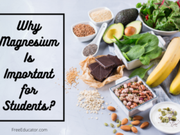 Why Magnesium Is Important for Students?