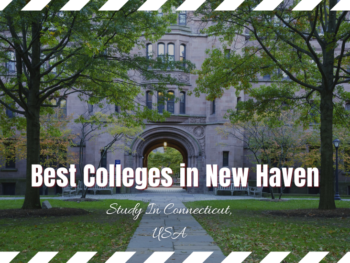 Best Colleges in New Haven, CT