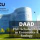 DAAD PhD Scholarships in Economics & Ecology at the Brandenburg University of Technology, Germany