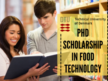 PhD Scholarship in Food Technology at the Technical University of Denmark
