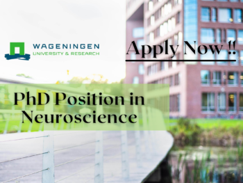 PhD Position in Neuroscience at Wageningen University
