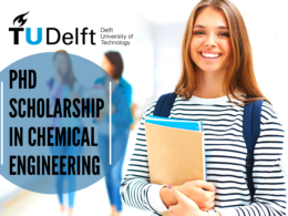 PhD Scholarship in Chemical Engineering at Delft University of Technology