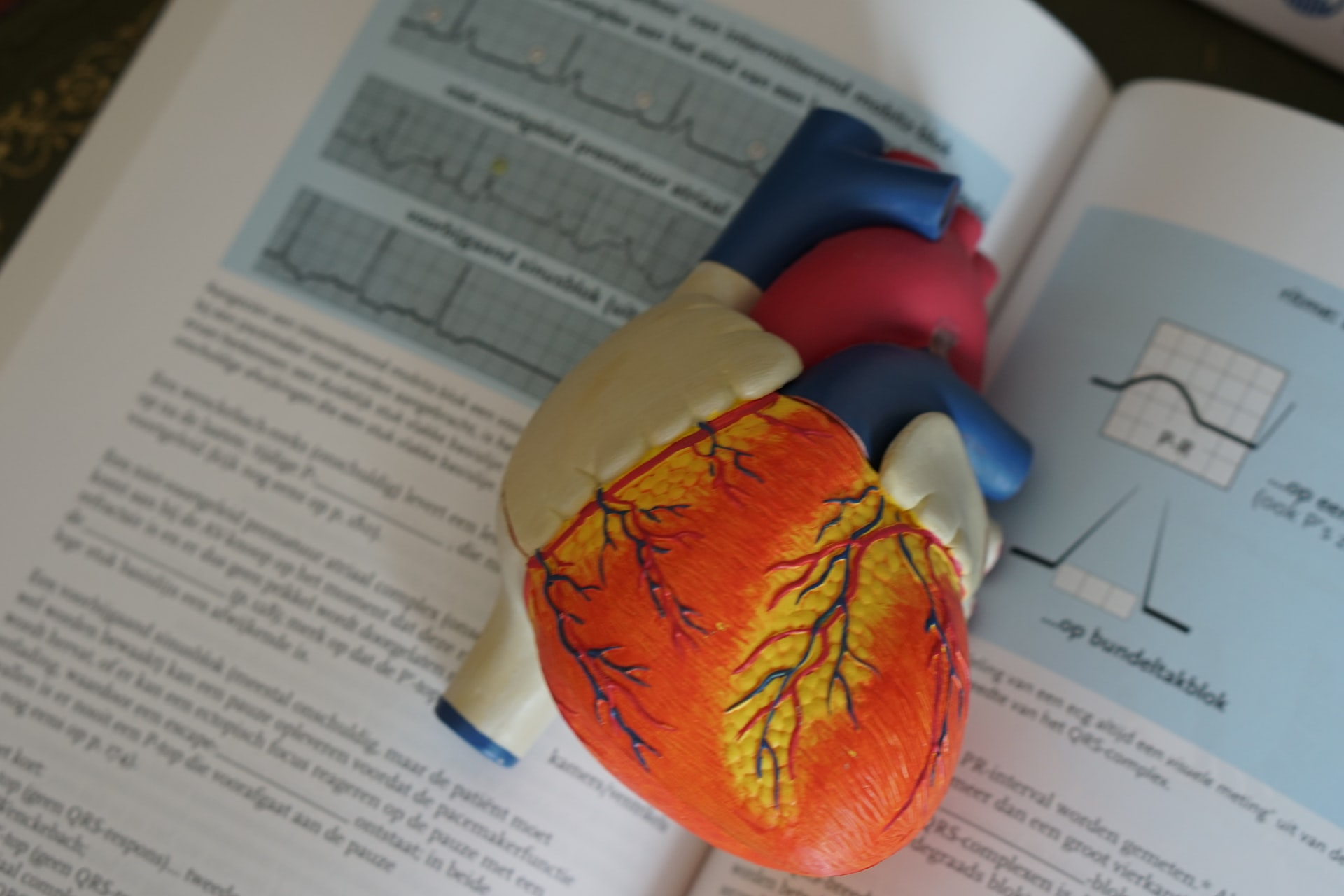 Organ donation pros and cons essay citing website articles in apa format